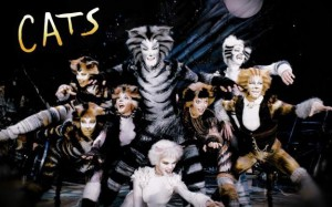 Cats- 20.03